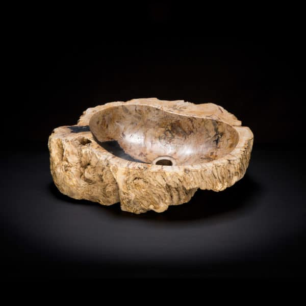 Petrified Burl Wood Fossil Sink-0
