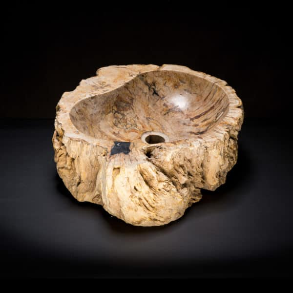 Petrified Burl Wood Fossil Sink-82