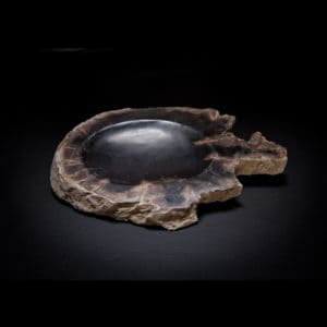 Petrified Wood Soap Dish-0