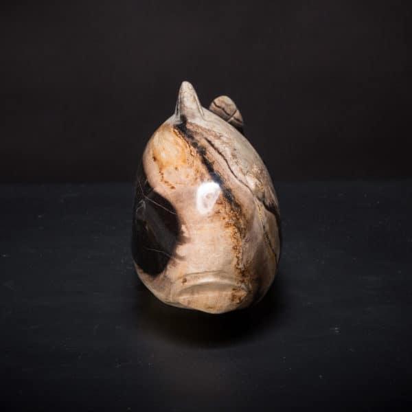 Petrified Wood Fish-753