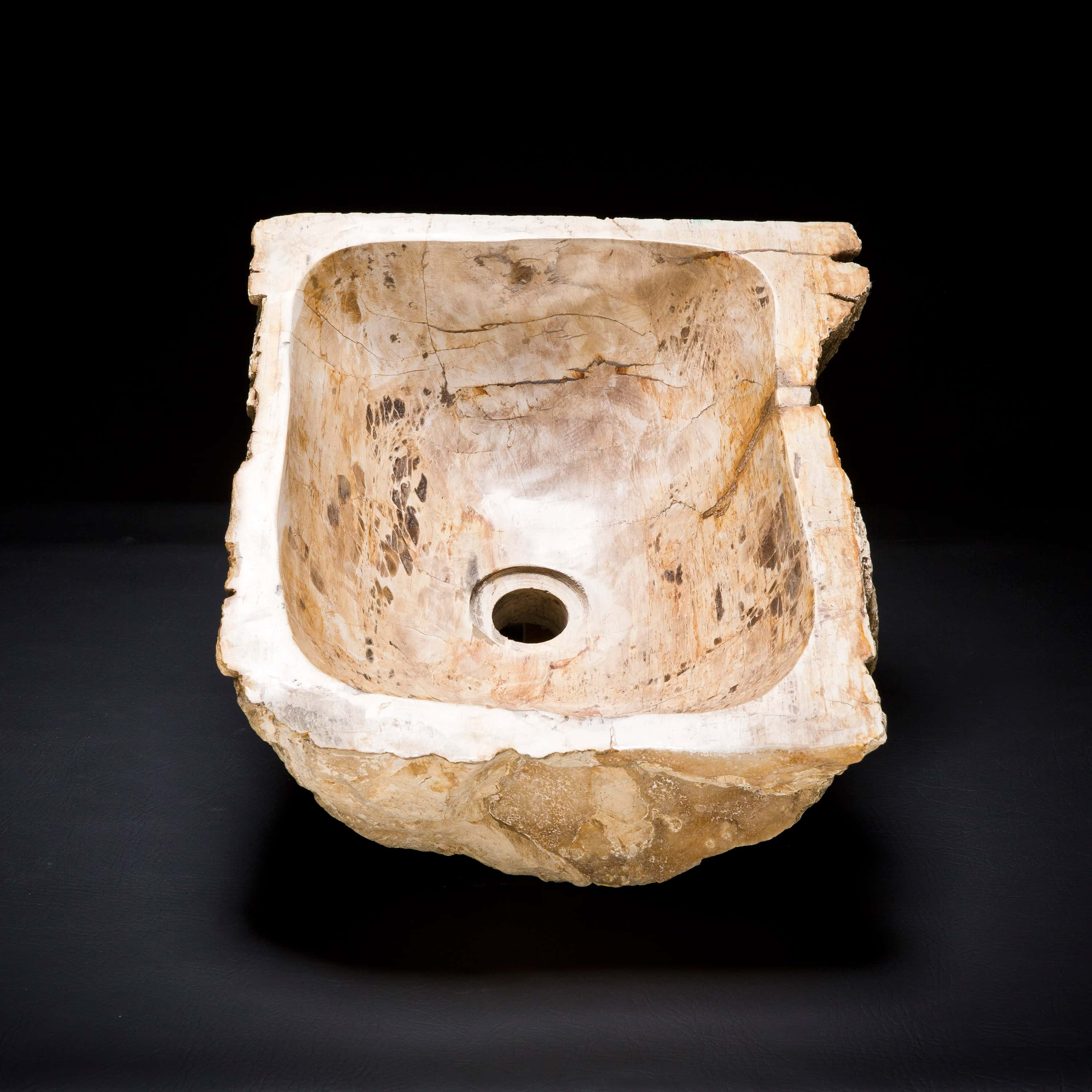 Rare Petrified Wood Fossil Vessel Sink With Iridescence