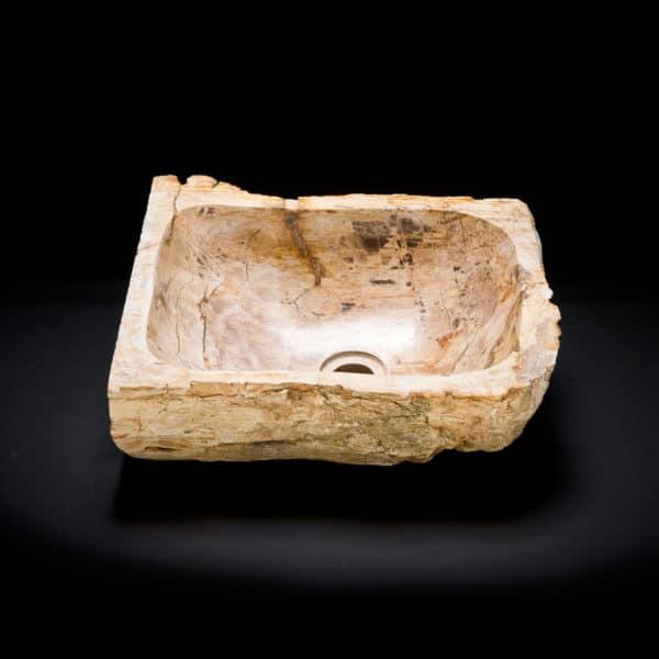 Petrified Wood Fossil Sink-308