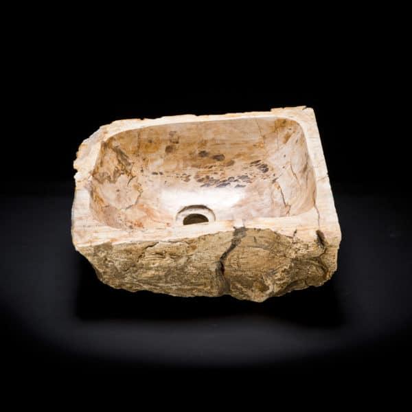Petrified Wood Fossil Sink-305