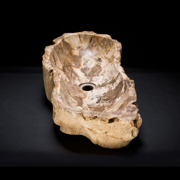 Petrified Wood Fossil Sink-315