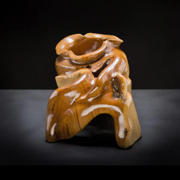 Teak Root Display Piece-373