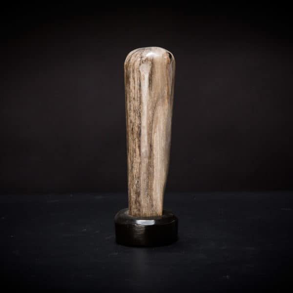 Petrified Wood Fossil-980