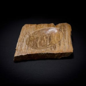 petrified wood fossil stone soap dish