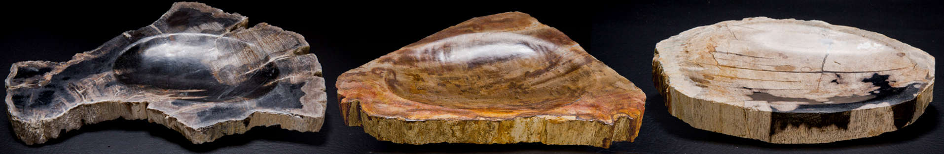 Petrified Wood Soap Dishes