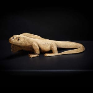 Iguana Wooden Sculpture