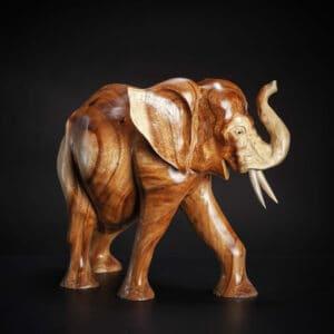 Waru Elephant