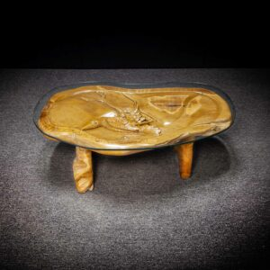 Teak Root Bird Coffee Table