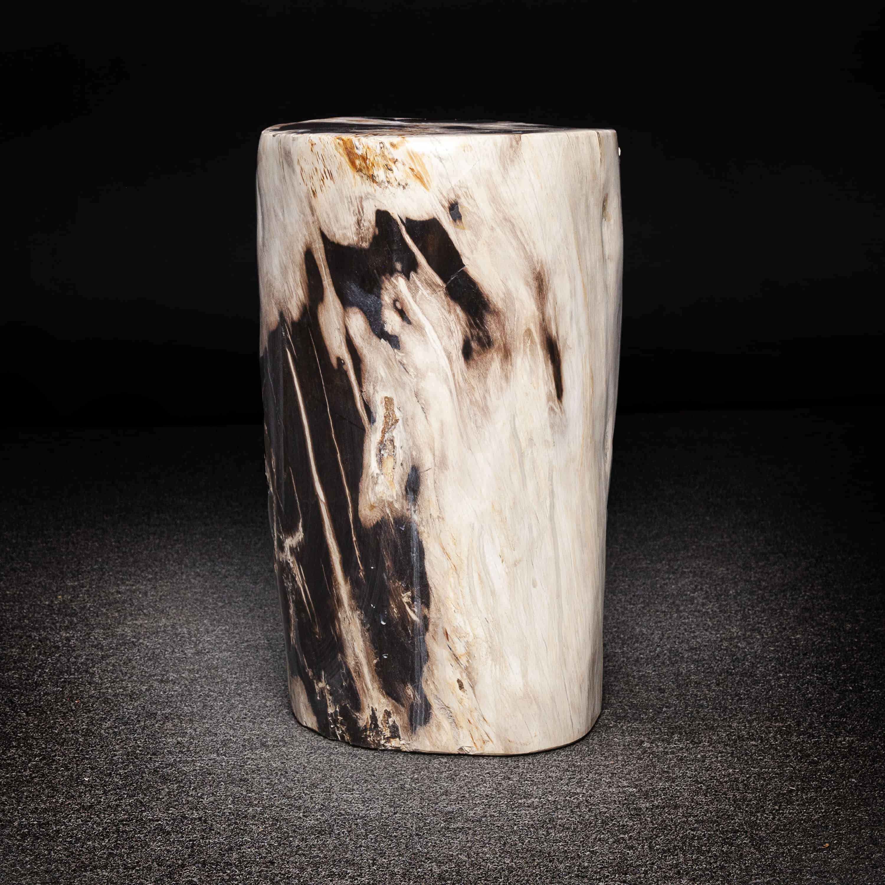 Petrified Wood Trunk Side Table Or Stool